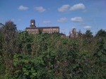 Hart Street allotments