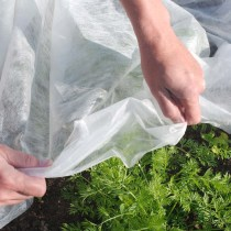 fleece covering vegetable plants