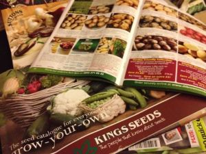 pile of seed catalogues