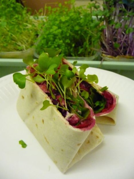 home made salad wrap