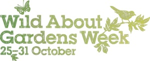 wild about gardens week 25th to 31st October 2013
