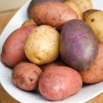 Mixture of Sarpo potatoes
