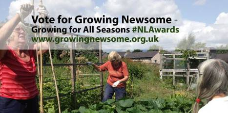 Vote for Growing Newsome
