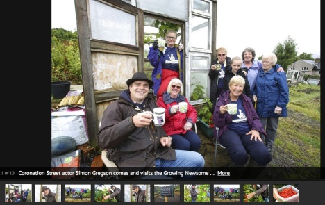 Huddersfield Examiner photo gallery from our allotment