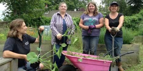 Growing Works at Almondbury Allotment