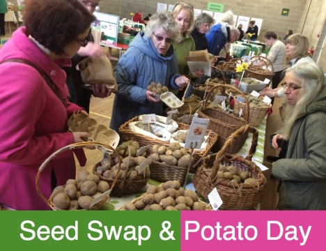 Seed Swap and Potato Day