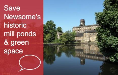 Save Newsome Mill Ponds