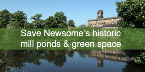 Save Newsome Mill ponds