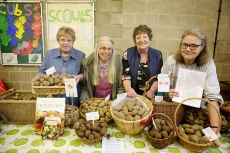 Potato Day 2017 photo Huddersfield Examienr