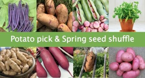 Potato pick and spring seed shuffle